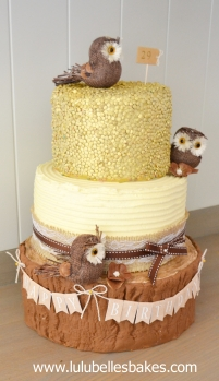 Owl and Sequin cake