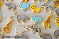 Jungle biscuits