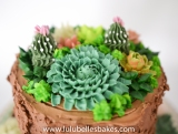 Buttercream succulents